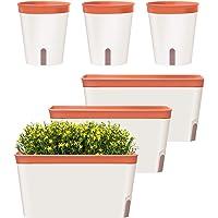 GardenBasix Self Watering Pots Window Box for Indoor Plants Home Garden Modern Decorative Flower Planter for All House…
