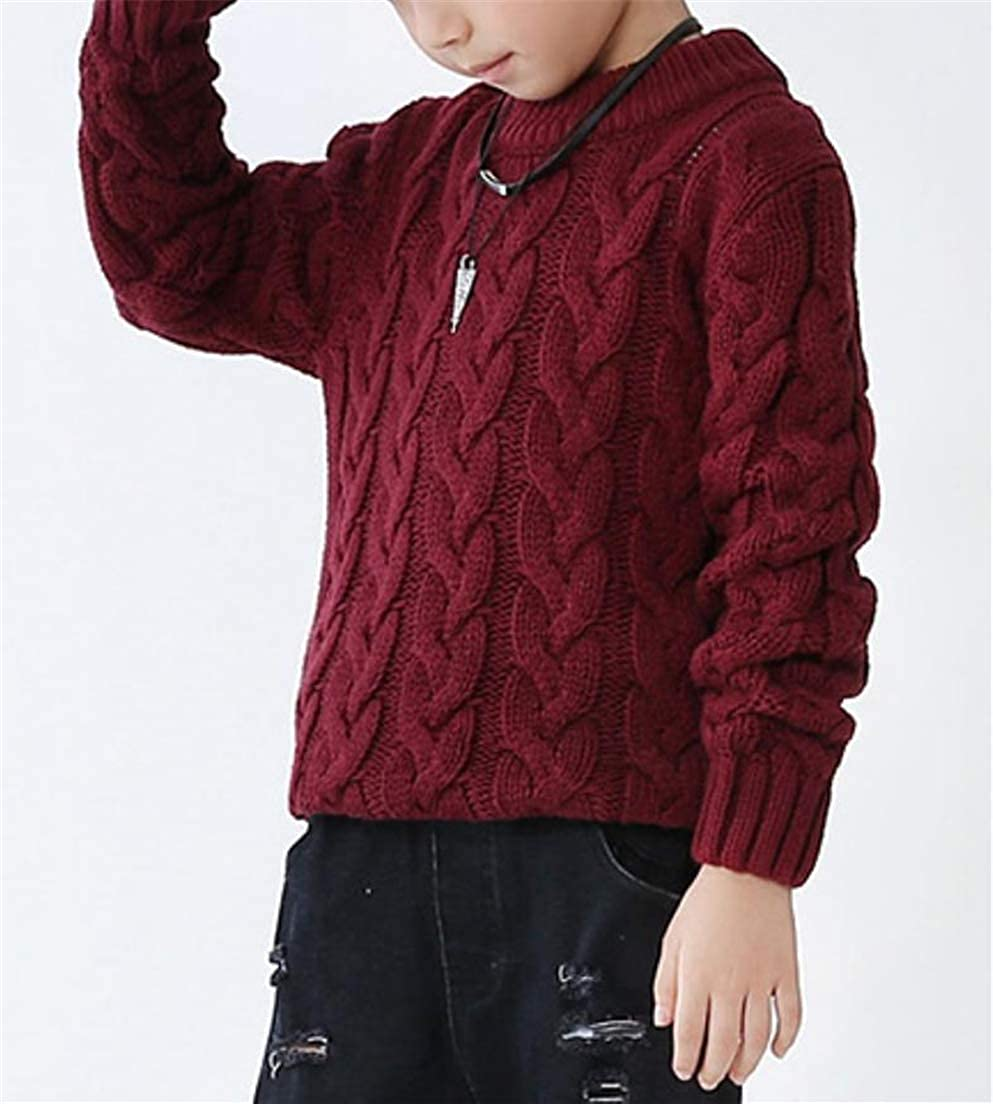 XiaoTianXinBaby XTX Boy Kids Autumn Winter Round Neck Cable Knitwear Slim Sweaters