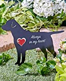 Best GENERIC Friends Statues - Pet Memorial Spinner Stake Dog Review