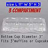 3 Compartment Cupcake Boxes- Cupcake- Containers 12 Pack Cupcake Containers, (12, 3 -Compartment)