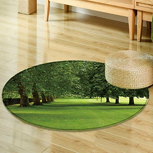 Small round rug Carpet parallel rows of sycamore and horse chestnut trees in full leaf on a windy summ door mat indoors Bathroom Mats  Non Slip -Round 55
