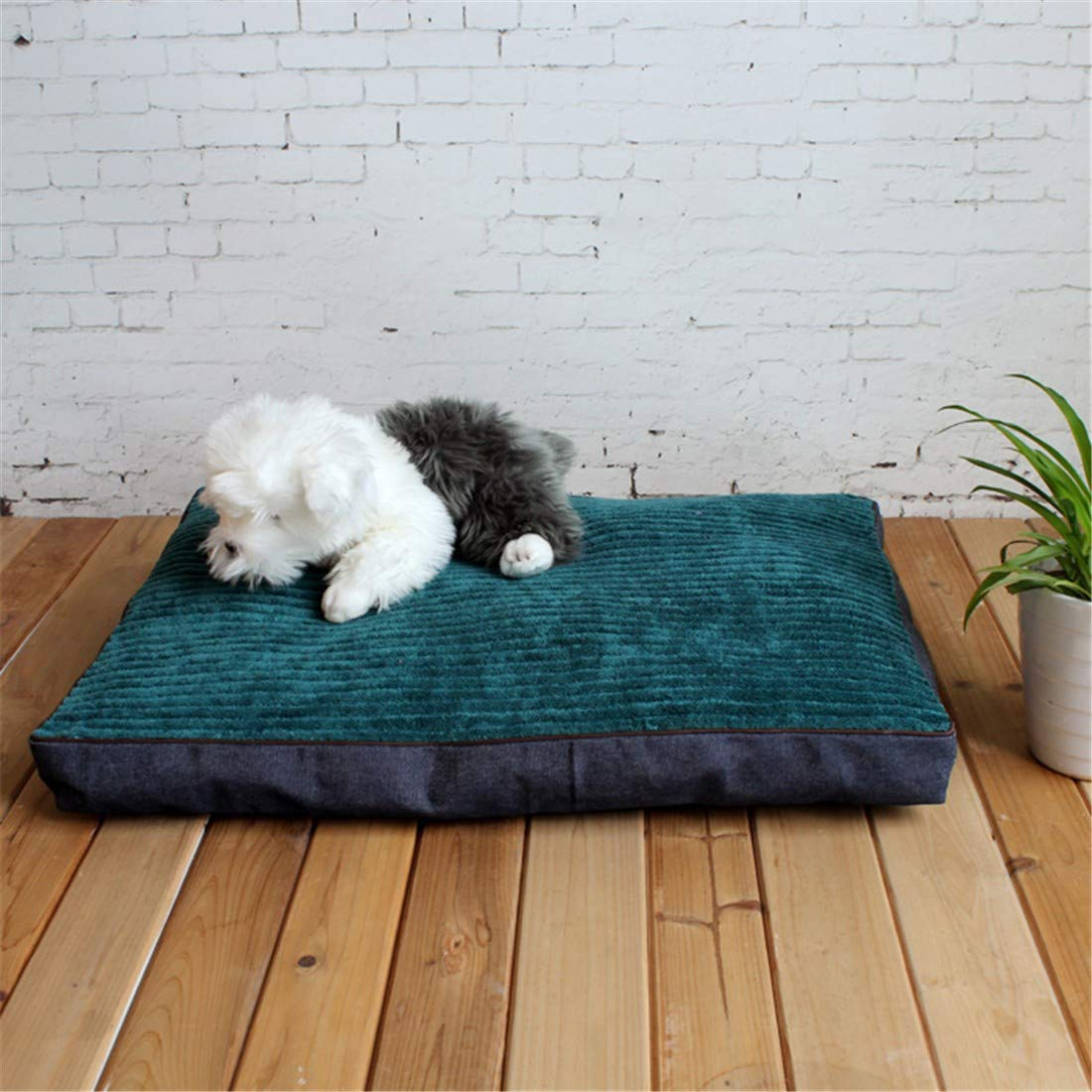 M 80X60X8cm STAZSX Dog pad pet nest Kennel cat Litter mat pet Supplies, M  80X60X8cm
