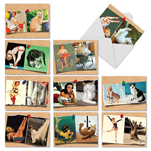 (10 Hilarious Note Cards for All Occasions - Assorted 'Cats and Chicks' Blank Greeting Cards with Envelopes - Stationery for Weddings, Birthdays, Holidays and Gratitude - NobleWorks M6484OCB)