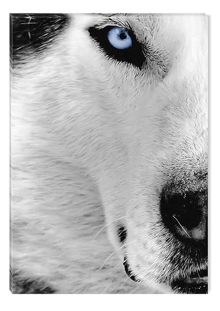 Amazon Com Inspirational Art Black And White Wolf Canvas