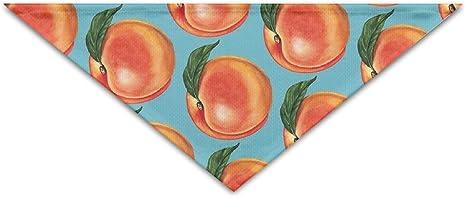 Rust Orange Bandana Tie On Triangle Dog Bandana Puppy Bandana Peach Floral Bandana Matching Bandana Pet Accessories Dog Collar