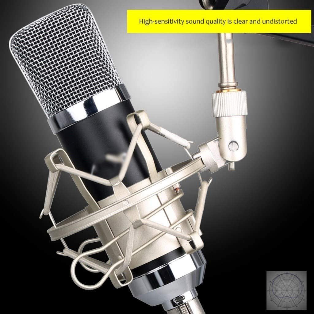 Color : B LEZDPP Condenser Microphone Set Network Recording K Song Computer Shouting Mai Live Equipment in The Diaphragm Microphone