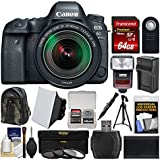Canon EOS 6D Mark II Wi-Fi Digital SLR Camera & EF 24-105mm IS STM Lens with 64GB Card + Backpack + Flash + Battery & Charger + Tripod + Filters Kit