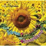 Vom Samen zur Sonnenblume, Kreislauf des Lebens