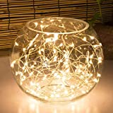 LSHCX Battery-Powered Copper Wire Starry String Lights,Elegant Rope Lights for Decoration,Holiday Parties (9.8' 30 LEDs Warm White)