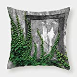 iPrint Satin Throw Pillow Cushion Cover,Mystic House Decor,Ivy on Wall with Aged Antique Empty Picture Frame as Window Creative Art,Green Charcoal,Decorative Square Accent Pillow Case