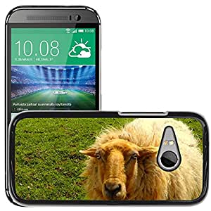 Super Stella Slim PC Hard Case Cover Skin Armor Shell Protection // M00147269 Sheep Wool Animal Flock Of Sheep // HTC One Mini 2 / M8 MINI / (Not Fits M8)