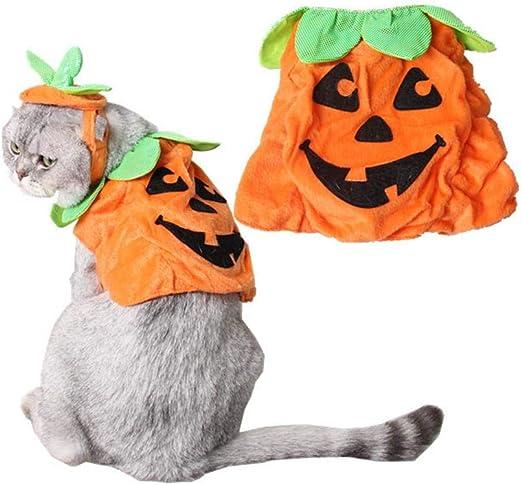 dream-cool Set De Calabaza De Halloween para Mascotas, Capa Y ...