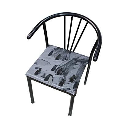 """Bardic HNTGHX Outdoor/Indoor Chair Cushion Abstract Penguin Square Memory Foam Seat Pads Cushion for Patio Dining, 16"""" x 16"""": Home & Kitchen"""