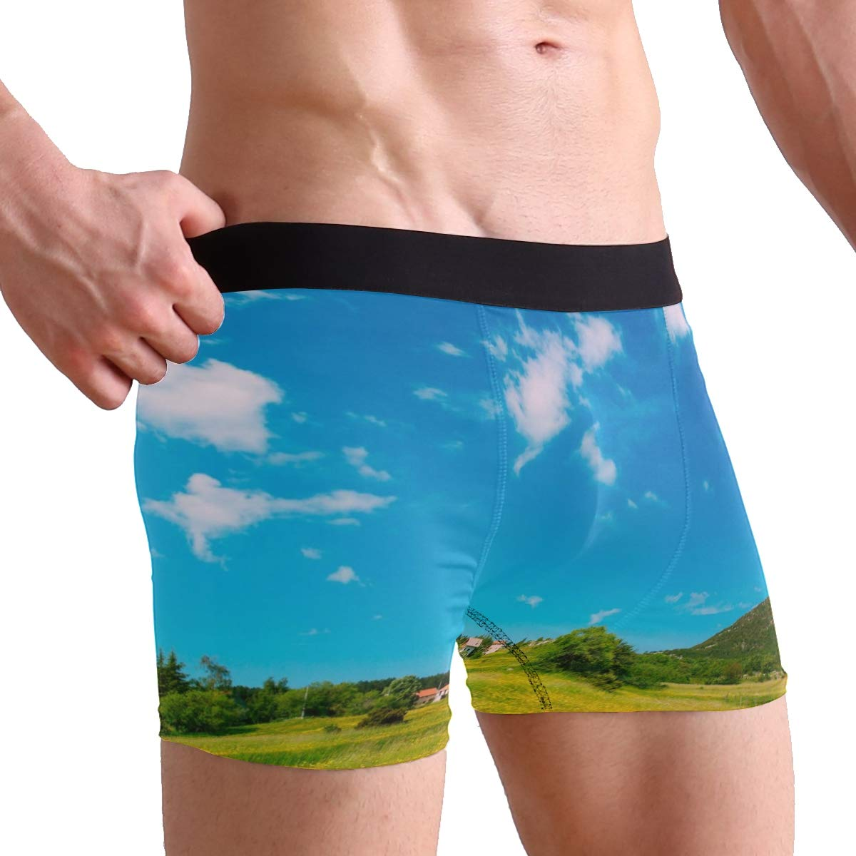 Mens 2-Pack Boxer Briefs Polyester Underwear Trunk Underwear with House On A Meadow Design