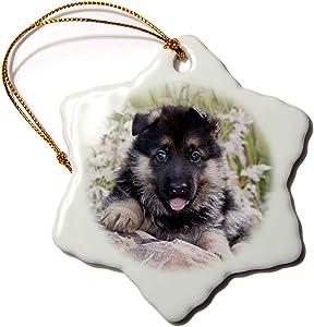 3dRose German Shepherd Dog on Rock in Garden - NA02 ZMU0112 - Zandria. - Ornaments (ORN_140392_1)