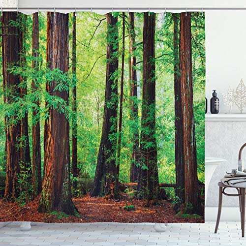 Ambesonne Woodland Shower Curtain, Redwood Trees Northwest Rain Forest Tropical Scenic Wild Nature Lush Branch, Cloth Fabric Bathroom Decor Set with Hooks, 70