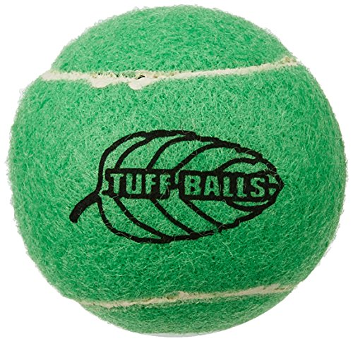 PetSport Tuff Mint Balls, 2 Pack ()