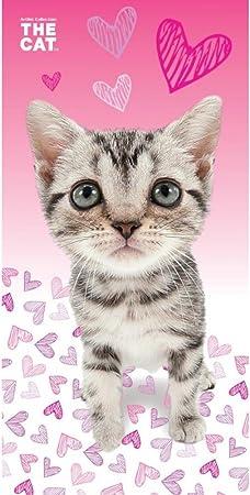 Artlist Collection The Cat Gatos – Toalla de Playa, algodón, Color Rosa/Blanco, 70 x 140 cm: Amazon.es: Hogar