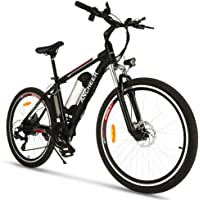 Rad-Rover-City-Mini Ecotric Ebike-Thumb Throttle Ancheer -1859NWest Pedego