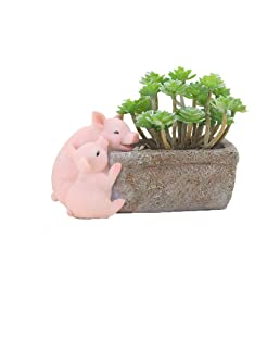 Youfui Home Decor Pot, Succulent Planter Flowerpot Decor for Home Office Desk (Dad and Son Pigs)