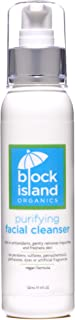 product image for Block Island Organics Purifying Facial Cleanser with Vitamin C & E Natural Anti-Aging Anti-Oxidants - EWG Top Rated - Gentle Moisturizing Organic Daily Face Wash for Dry, Oily & Sensitive Skin - 4 OZ