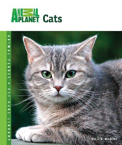 Planet Cat - 7