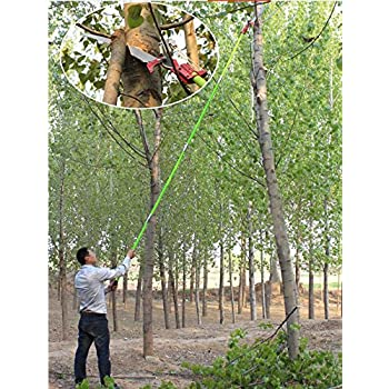 Amazon 26 foot length tree pole pruner tree saw garden tools 26 foot length tree pole pruner tree saw garden tools loppers hand pole saws greentooth Gallery