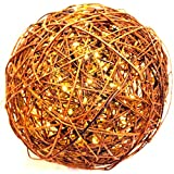 """Willowbrite Globe (12"""" globe filled with 100 Warm White LEDs) Natural Willow Branch Pendant Lamp, Christmas Decor, Night Globe, Tree Light Ball, Holiday, Patio, Outdoor, rattan, grape"""