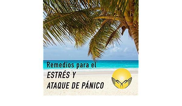 Remedios para el Estres y Ataque de Panico by George dEinaudio ...