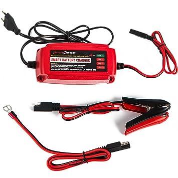Cargador de batería del coche de 12V 5A, cargador ...