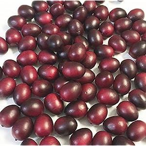 Cranberry, Artificial Fruit Fake Food, Bag of 72 25