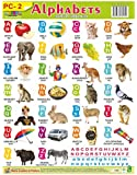 Wall CHARTS PLASTIC NON TEARABLE OF ALPHABETS Book for Kids by Aadi Learning Arena