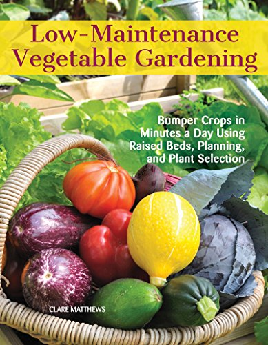 Low-Maintenance Vegetable Gardening: Bumper Crops in Minutes a Day Using Raised Beds, Planning, and Plant Selection
