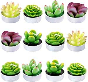 Swpeet 12Pcs Decorative Succulent Cactus Tealight Candles Kit, Cute Smokeless Succulent Plants Perfect for Candles Festival Wedding Props and House-Warming Party (N0.5-Candle)
