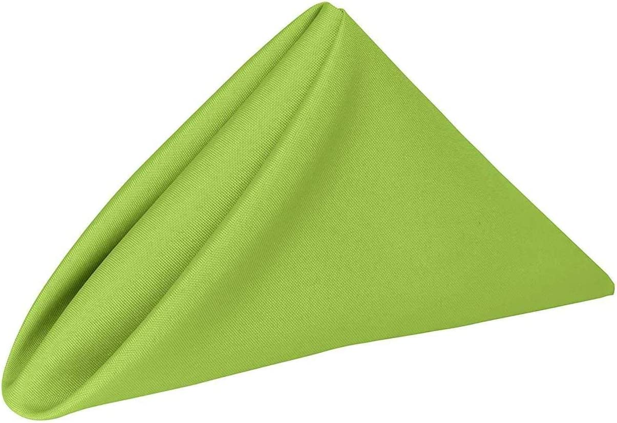 Allways Party 10 Pack Cloth Napkins (17 x 17 Inches) Dinner Napkins (Green)