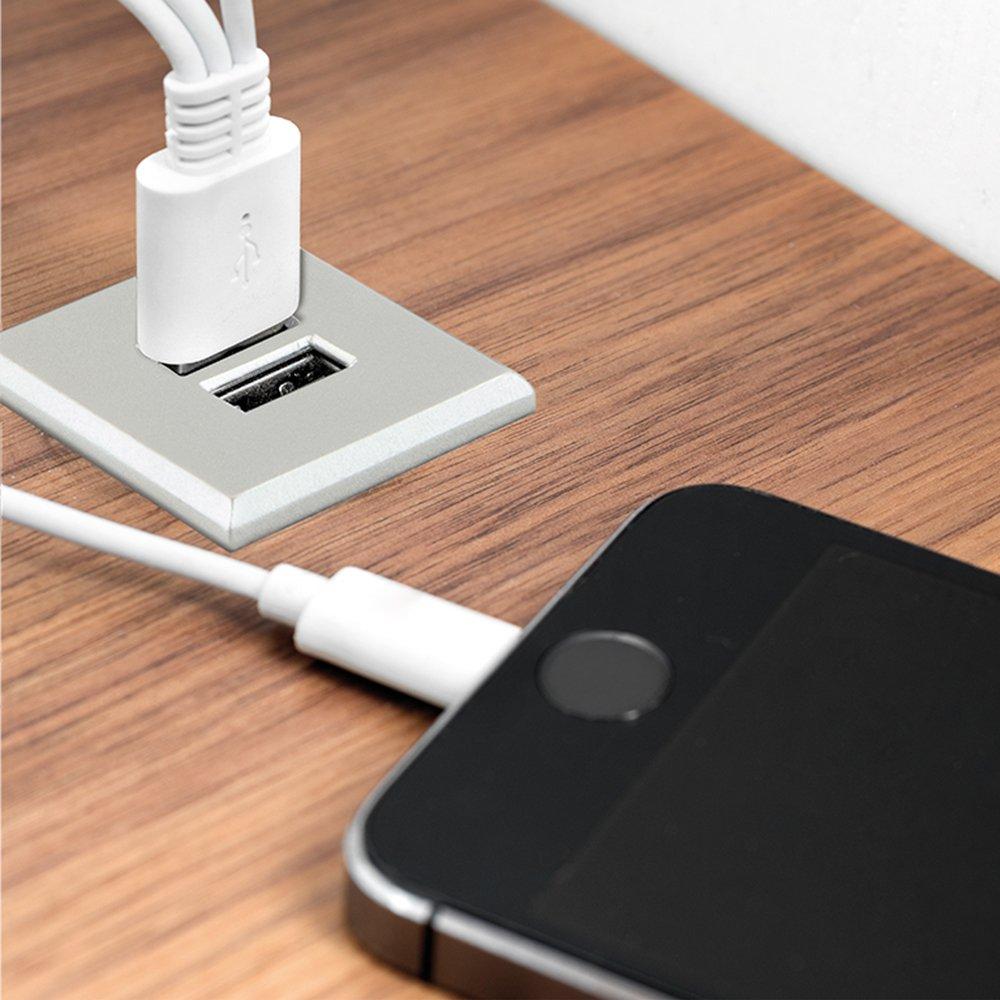 Emuca - Cargador USB universal tipo-A con 2 puertos para encastrar en mueble, color gris metalizado