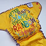 Rainbow Baby - One Size (11-35#) - Waterproof AI2 Cloth Diaper