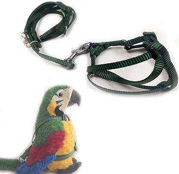 ASOCEA - Arnés Ajustable para pájaros y Correa para cacatúas ...
