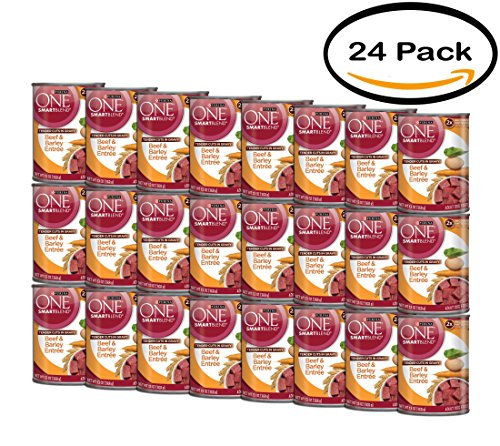 PACK OF 24 - Purina ONE SmartBlend Tender Cuts in Gravy Beef