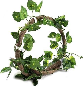 Petyoung Enredadera de Reptil con Hoja Realista 3. Rama de Escalada de Reptil de 28 Pies Selva Flexible Planta de Decoración de Hábitat para Mascotas ...