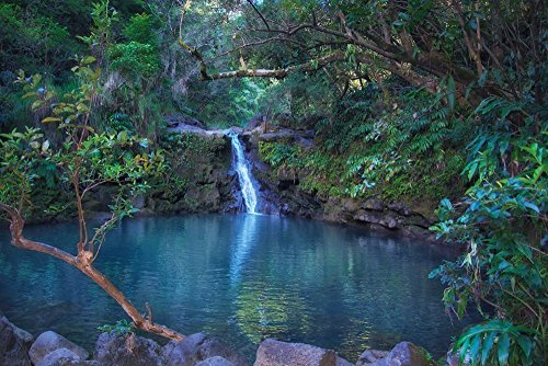 Tropical Waterfall Picture, Waikamoi Falls, Hawaiian Landscape Art