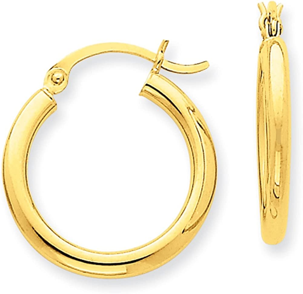 Lex /& Lu 14k Yellow Gold Polished 2.5mm Lightweight Round Hoop Earrings LAL81562