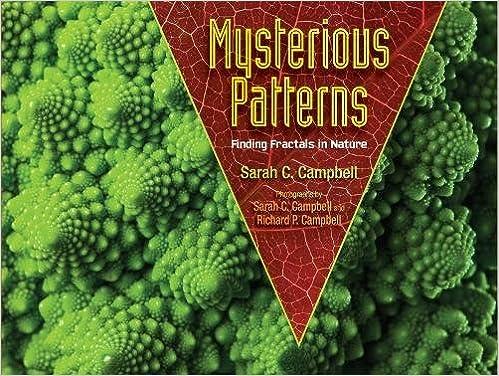 """""BEST"""" Mysterious Patterns: Finding Fractals In Nature. openbaar Bridge Proyecto exactly Santo picture actor pulgadas"