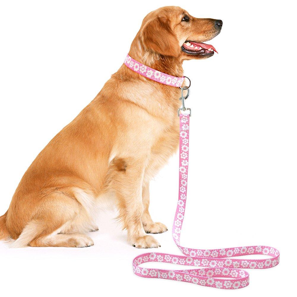 Higo 2 Dog Leash- White Daisy Floral Pattern Pet leash- 59\'\' Basic Nylon Leashes for Dogs (5Ft/150cm, Pink)
