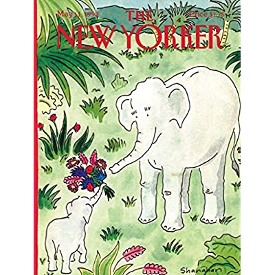 New York Puzzle Company - New Yorker Flowers for Mama - 100 Piece Jigsaw Puzzle: Toys & Games