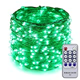 ER CHEN(TM) 99ft Led String Lights,300 Led Starry Lights on 30M Silver Coating Copper Wire String Lights + 12V DC Power Adapter + Remote Control(Green)