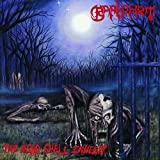 The Dead Shall Inherit ( LP )