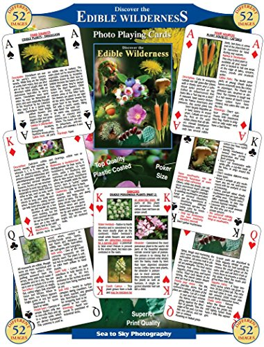 discover-the-edible-wilderness-playing-cards