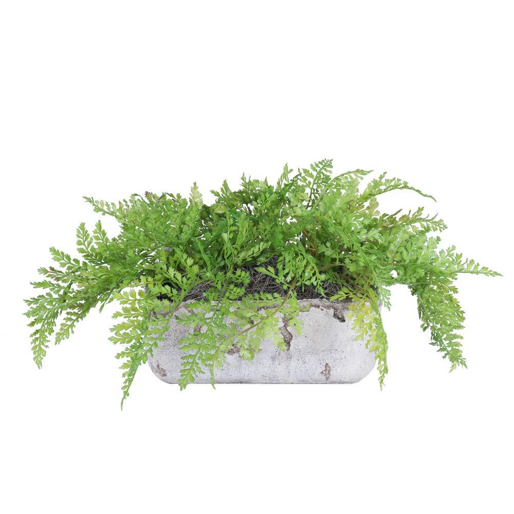 Vickerman F12215 Green Fern Everyday Floral