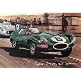 Jaguar at Le Mans - A Set of 4 Postcards C-type, D-type, E-type & XJR by golden era